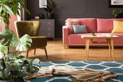 Real photo of blanket placed on moroccan trellis carpet in living room interior with green armchair, powder pink couch with. Pillows and coffee table with book royalty free stock images