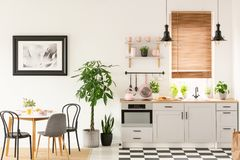 Real photo of bright kitchen interior with checkerboard floor, p. Astel pink accessories, fresh plants and dining table on carpet concept stock photo