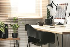 Real photo with close-up of home office corner in living room in. Terior with fresh plants and window with blinds royalty free stock images