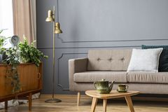 Real photo of a couch with pillows standing behind a small table. With pot and next to a lamp and cupboard with plants in living room interior stock photography