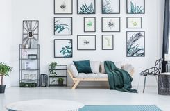Real photo of a couch standing between a black chair and two she. Lves with plants and ornaments in a living room interior with botanic posters and small rugs royalty free stock photography