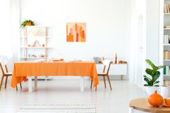 Dining room in vivid color. Orange tablecloth on long table with white chairs. Real photo of dining room in vivid color. Orange tablecloth on long table with royalty free stock image