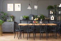 Real photo of a gray and black dining room interior with posters. On a dark wall with molding, lamps above wooden table and plants on metal racks royalty free stock photography