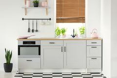 Real photo of a kitchen interior with white cupboards, pink accessories, plants and window blinds Stock Photo