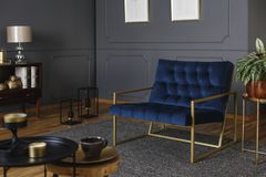 Real photo of a large, navy blue armchair with golden frame against dark wall with molding in elegant living room interior royalty free stock photo