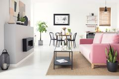 Real photo of open space flat interior with pink velvet sofa, fi. Replace, dining table and kitchenette stock photo