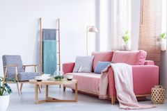 Real photo a pink couch with cushions and blanket standing in a. Living room next to an armchair and a wooden table with a ladder in the background and windows stock image