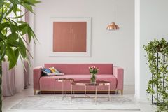 Real photo of a pink couch, round coffee tables and painting in a modern living room interior. Concept royalty free stock image