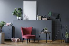 Real photo of a red armchair in a dark living room interior with. A small table, black lamp and a chest with the plants and ornaments around them. Poster mockup royalty free stock photography