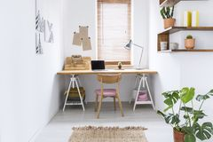 Simple home office interior in a bright room with a desk, window blinds and plant. Real photo of a simple home office interior in a bright room with a desk stock photo