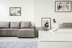 Real photo of a simple, open space flat interior with sleeping a royalty free stock photo