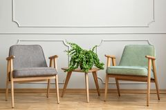 Real photo of a small table with a plant standing between two ch Royalty Free Stock Photos