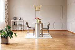 Spacious dining room interior with a golden lamp, wall molding and plant stock photo