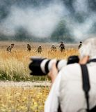 The real photographer always in the most dangerous place royalty free stock photos