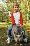 A Real Piggy Back Rider royalty free stock images