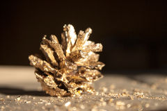 Real pine cone in gold glitters Stock Images