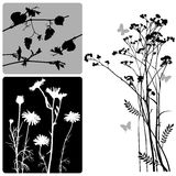 Real Plants Silhouette - Vector Set Stock Image