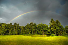 Rainbow above green trees Stock Image