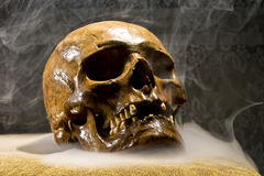 Real skull. In the abstract smoke on the black background Royalty Free Stock Photos