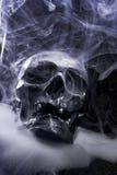 Real skull Stock Photo