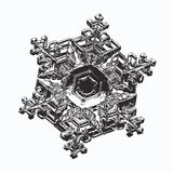 Real snowflake on white background vector illustration