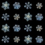 Real snowflakes isolated on black background. Snowflakes isolated on black background. Macro photo of real snow crystals: small star plates with fine hexagonal Stock Photo