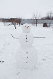 Real snowman outdoors Royalty Free Stock Photography
