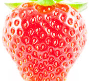 Real strawberry Royalty Free Stock Images