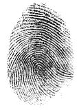 Real thumb fingerprint pattern isolated Royalty Free Stock Image