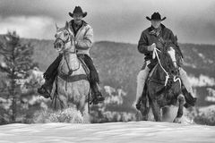 Real time cowboys. Two cowboys riding through snow in northern Royalty Free Stock Image