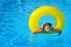 Real toddler girl at swimming pool Royalty Free Stock Images