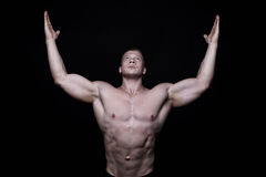 Real torso Stock Images