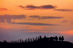 Real Tuscany Sundown Silhouettes landscape Stock Photos