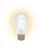 Lamp. The real vector luminescent lamp Royalty Free Stock Photo