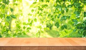Real wood table top texture on leaf tree garden background