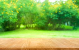 Free Real Wood Table Top Texture On Leaf Tree Garden Background Royalty Free Stock Photography - 134034207