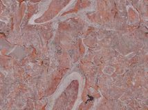 Real World Red Pink And Gray Marble Stock Photography