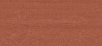 Real World Wood Seamless Texture Goncalo Alves Stock Image