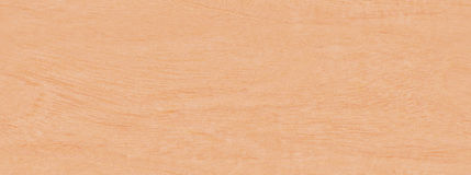 Real World Wood Seamless Texture Primavera Stock Photo