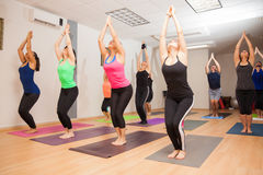 Real yoga class in progress. Wide angle view of a big group of people doing a chair pose during a real yoga class Stock Image