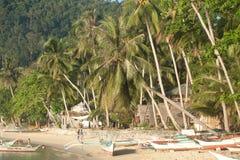 Reala plażowy życie na wyspie Palawan, Filipiny Obraz Royalty Free
