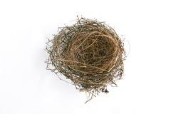Reala pusty ptaka gniazdeczko na biel Zdjęcia Stock