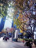 RealChina-UrbanCityShanghai5-《winterMorining》 stock photos