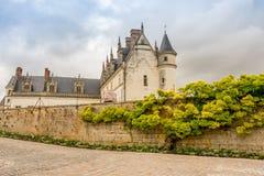 ` Reale Amboise del castello d con l'albero giallo del fiore sulla parete Fotografia Stock