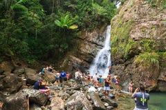 Realidade do EL Yunque Imagens de Stock Royalty Free