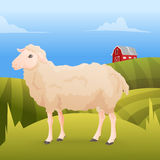 Realisic cute sheep standing on the gras with farm Royalty Free Stock Image