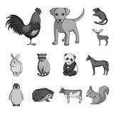 Realistic animals monochrome icons in set collection for design. Wild and domestic animals vector symbol stock web. Realistic animals monochrome icons in set Royalty Free Stock Image