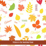 Realistic autumn leaves seamless pattern. Bright seamless pattern design with colorful autumn leaves of different trees. Ecology concept Royalty Free Stock Photography