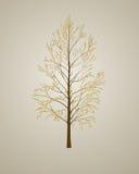 Realistic autumn tree background Royalty Free Stock Image