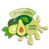 Realistic avocado. Stock Image
